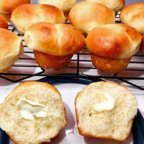 Soft Bread Roll Recipe